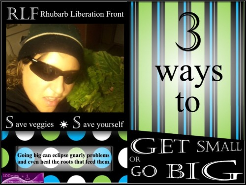 3 Ways to Get Small or Go Big